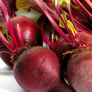 BEETROOT 'Detroit Dark Red' - Beta vulgaris