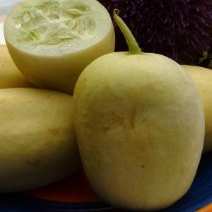 Cucumber 'Crystal Apple' - Cucumis sativas